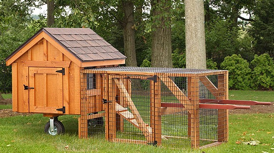 A Frame Chicken Coops - EBERLY BARNS