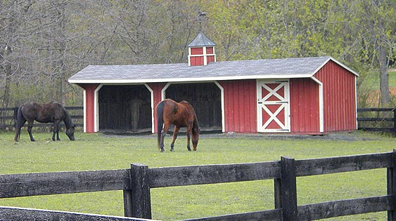 Eberly Barns - A horse barn for every farm